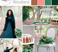 Wedding Colour Scheme { Arabian Woodland }