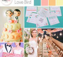 Wedding Colour Scheme { 'Love Bird' inspired }