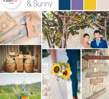 Wedding Colour Scheme { Rustic Sunshine }