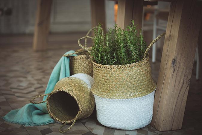 green sage minimalistic styled shoot