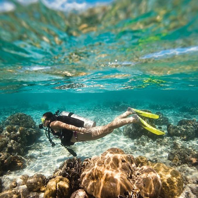 Al Boom Diving_BoatDive