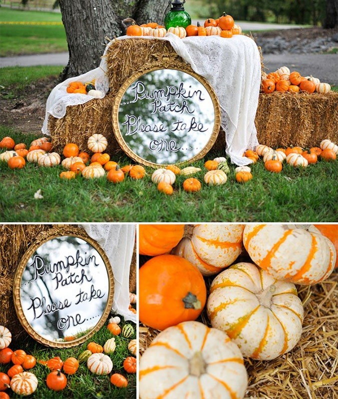 The Big Fat Indian Wedding Pumpkin-Patch-Natalie-Franke