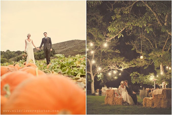 The Big Fat Indian Wedding Pumpkin-fall-wedding-Wildflower-Photography