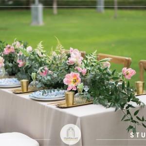 Zabeel Ladies Club Garden Setup