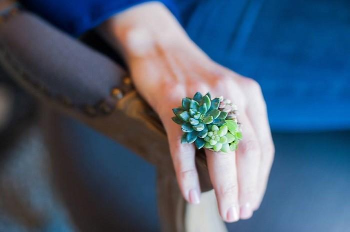 succulent ring.