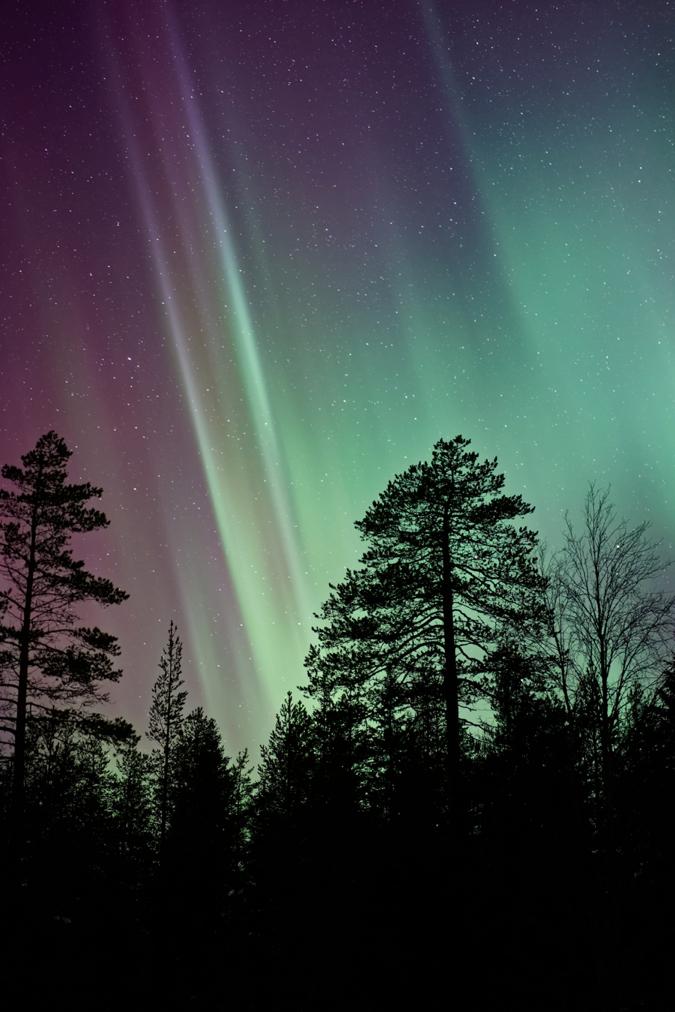 Lapland 10