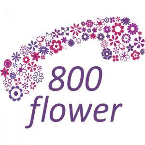 800 Flowers Dubai logo