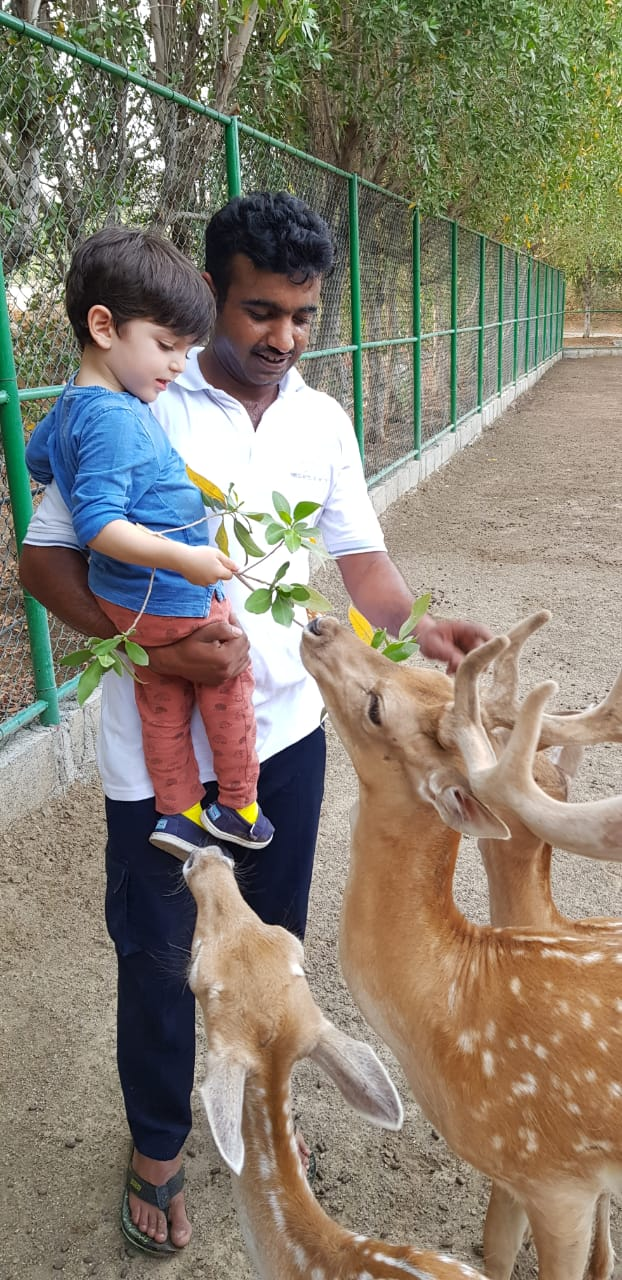 Kai with the baby deer at JA Hatta Fort Hotel